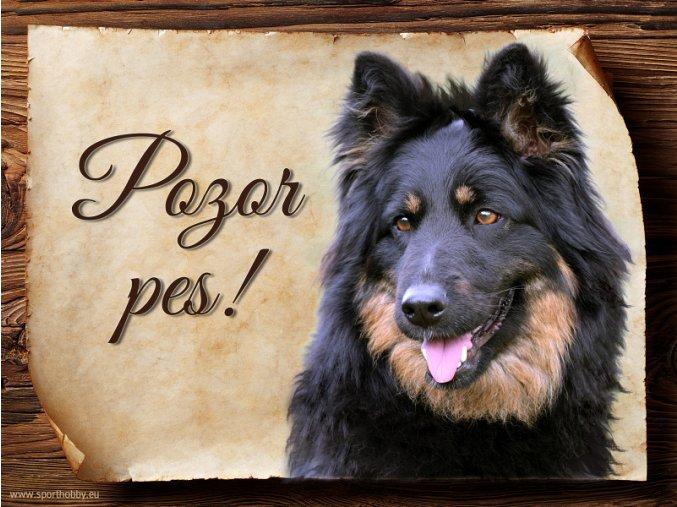 Cedulka Chodský pes - Pozor pes/CP534