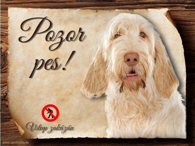 Cedulka Italský spinone - Pozor pes zákaz/CP153