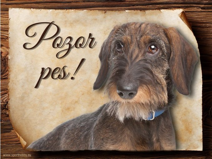 Cedulka Jezevčík - Pozor pes/CP240
