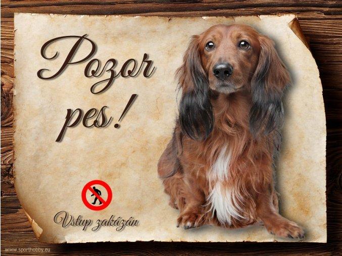 Cedulka Jezevčík - Pozor pes zákaz/CP237