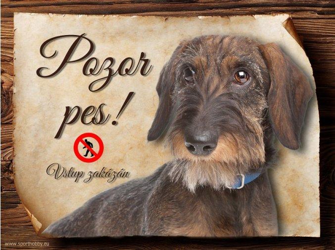 Cedulka Jezevčík - Pozor pes zákaz/CP243