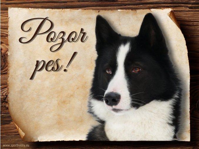 Cedulka Karelský medvědí pes - Pozor pes/CP138