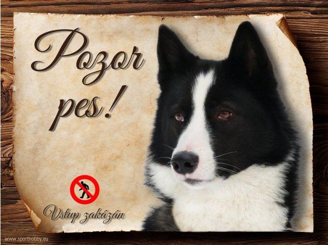 Cedulka Karelský medvědí pes - Pozor pes zákaz/CP141