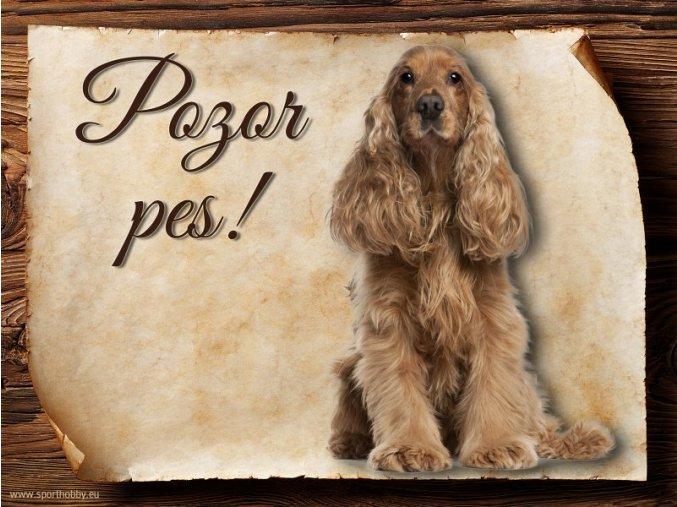 Cedulka Anglický kokršpaněl - Pozor pes/CP204