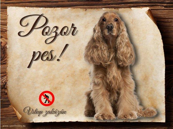 Cedulka Anglický kokršpaněl - Pozor pes zákaz/CP207