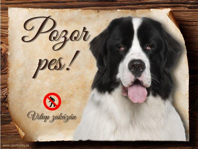 Cedulka Landseer - Pozor pes zákaz/CP471