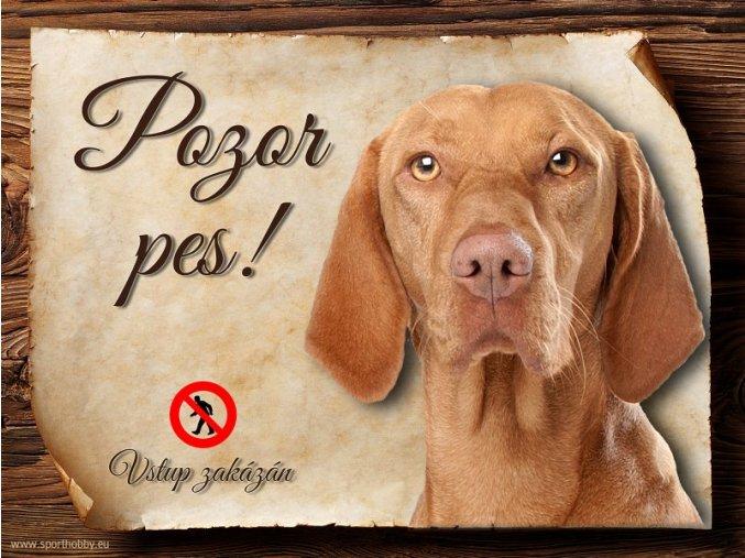 Cedulka Maďarský ohař - Pozor pes zákaz/CP249