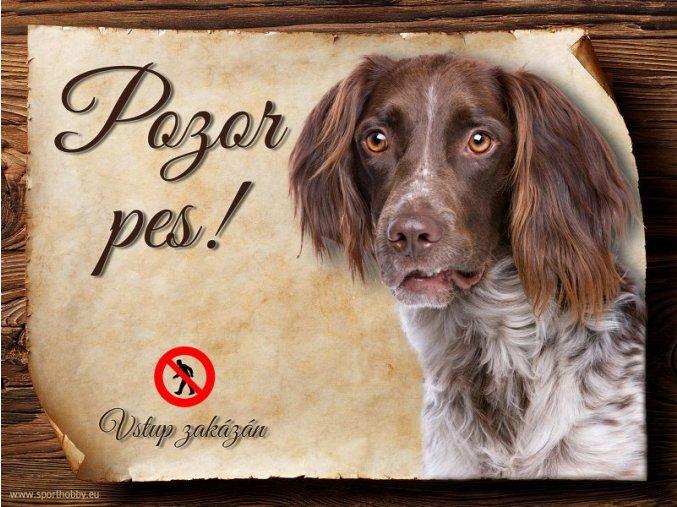 Cedulka Münsterlandský ohař - Pozor pes zákaz/CP291