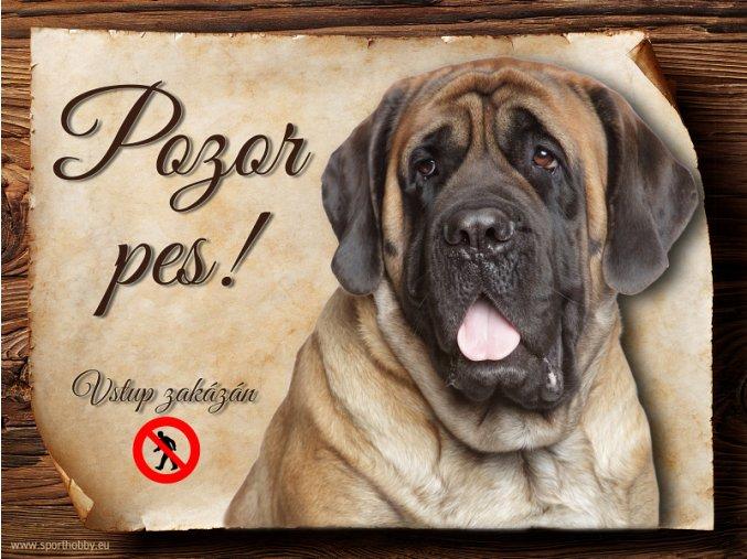 Cedulka Anglický mastif - Pozor pes zákaz/CP597