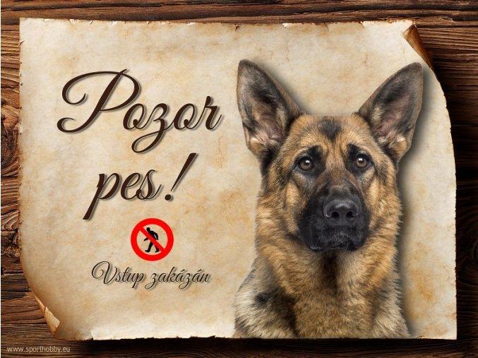 Cedulka Německý ovčák II - Pozor pes zákaz/CP129