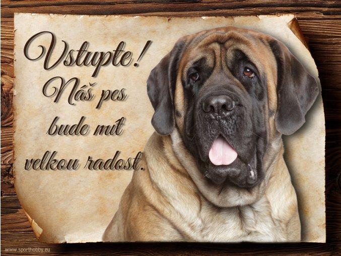 Cedulka Anglický mastif - Vstupte/CP598