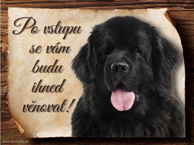 Cedulka Novofunlandský pes - Po vstupu .../CP039