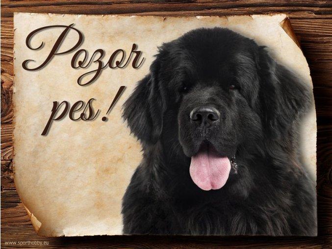 Cedulka Novofunlandský pes - Pozor pes/CP037