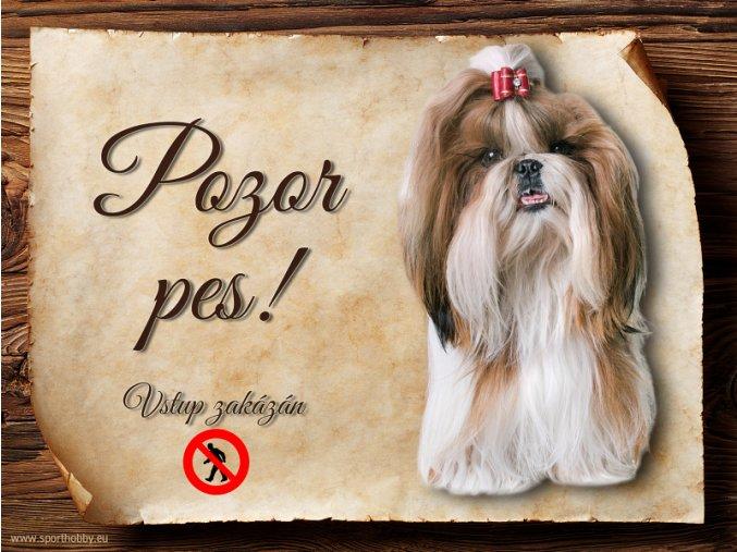 Cedulka Shih-tzu - Pozor pes zákaz/CP567