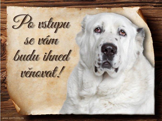 Cedulka Středoasijský pastevecký pes - Po vstupu .../CP316
