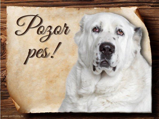 Cedulka Středoasijský pastevecký pes - Pozor pes/CP314