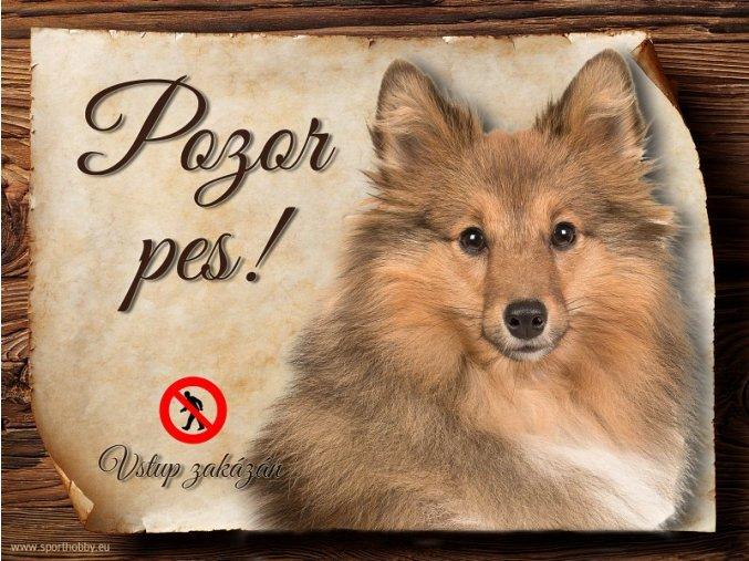 Cedulka Šeltie - Pozor pes zákaz/CP383_1
