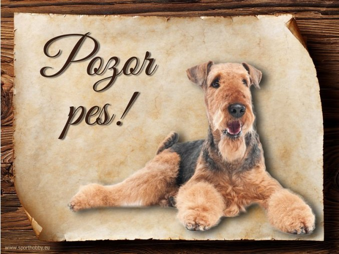 Cedulka Airedalský Terrier - Pozor pes/CP108