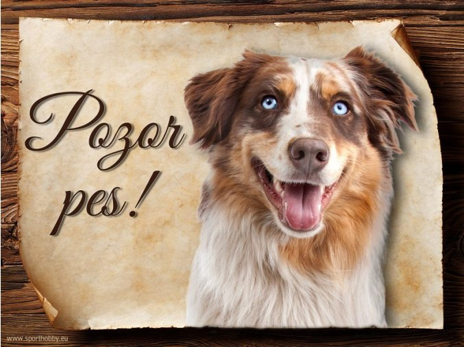 Cedulka Austraský ovčák - Pozor pes/CP186