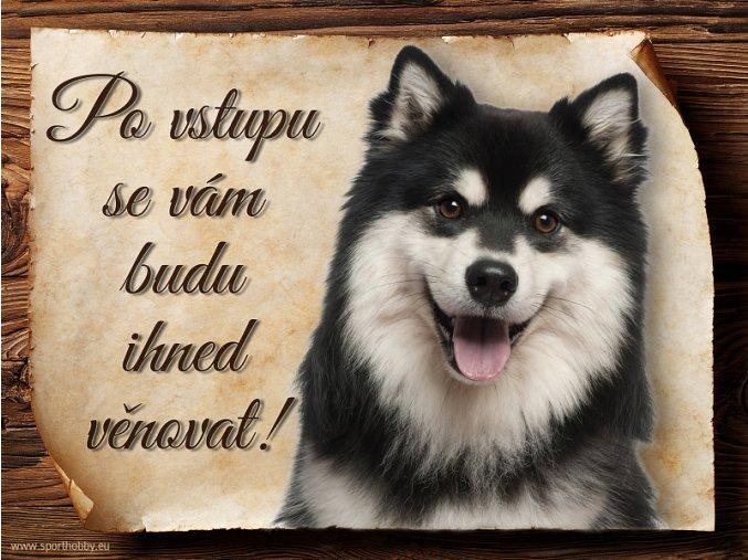 695 Cedulka Finský laponský pes