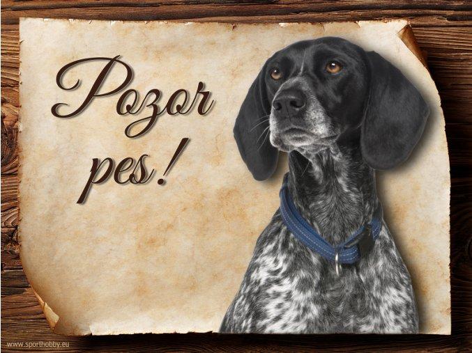 Cedulka Auvergneský ohař - Pozor pes/CP624