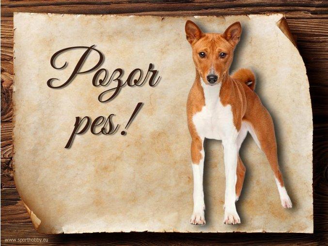 Cedulka Basenji - Pozor pes/CP114