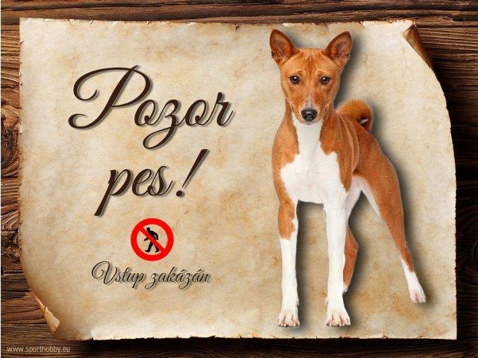 Cedulka Basenji - Pozor pes zákaz/CP117