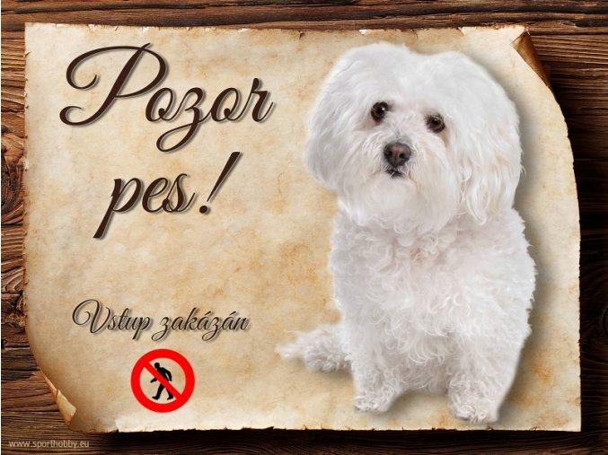 937 Cedulka Boloňský psík