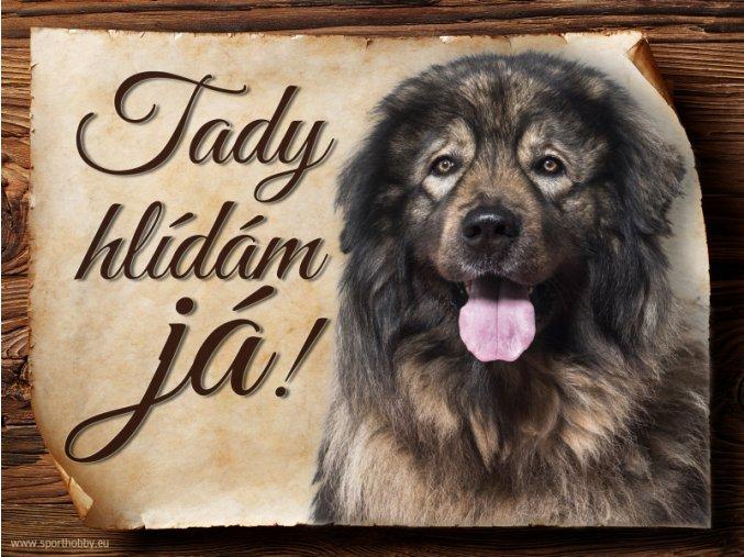 960 Šarplaninský pastevecký pes