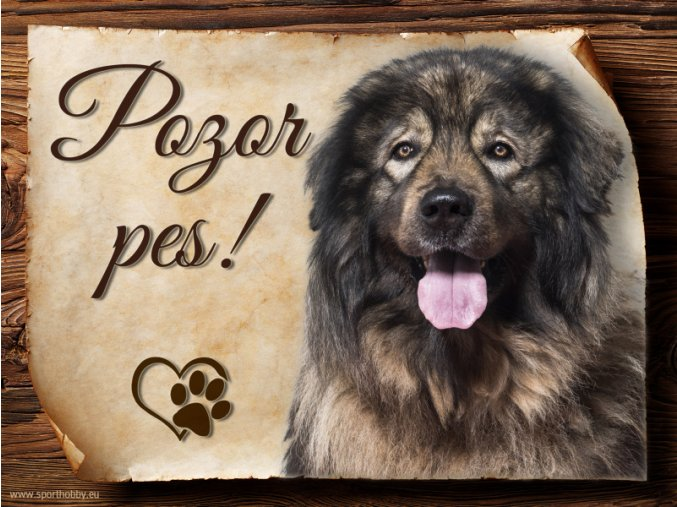 961 Šarplaninský pastevecký pes