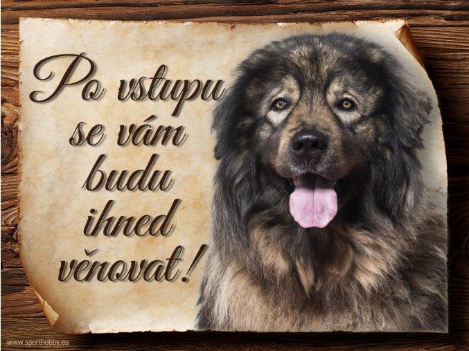 963 Šarplaninský pastevecký pes