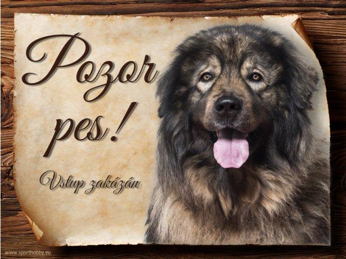 964 Šarplaninský pastevecký pes