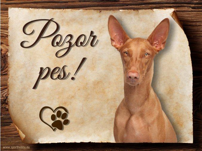974 Faraonský pes