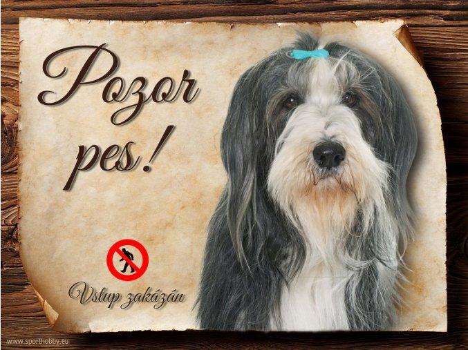 Cedulka Bearded kolie I - Pozor pes zákaz/CP273
