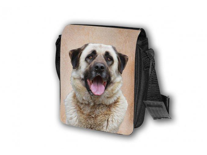 T172 Taška Anatolský pastevecký pes