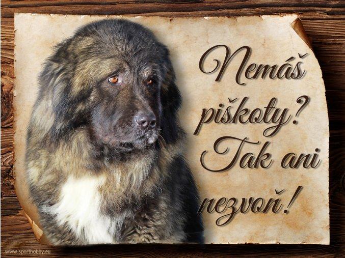 1144 Cedulka Kavkazský pastevecký pes