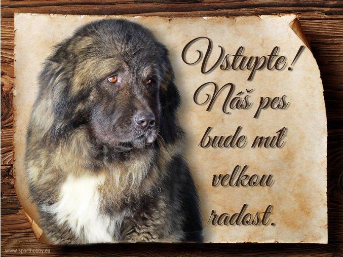 1147 Cedulka Kavkazský pastevecký pes