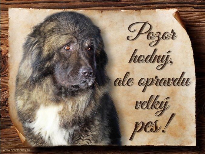 1148 Cedulka Kavkazský pastevecký pes