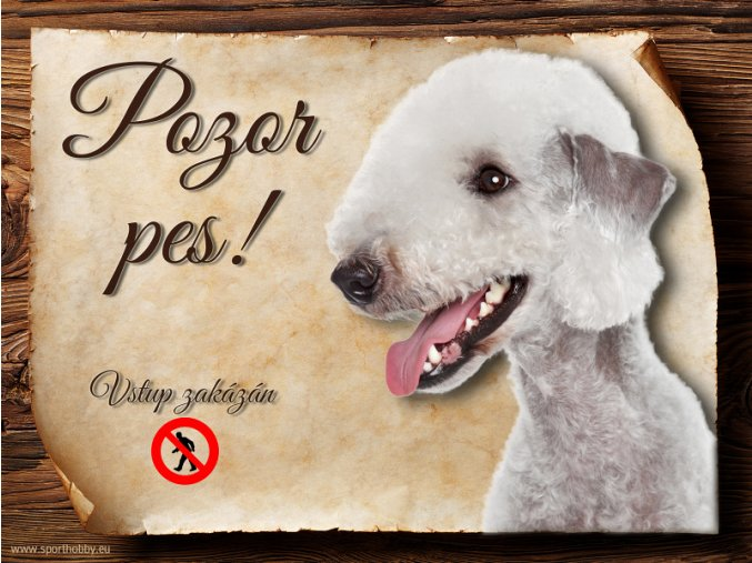 Cedulka Bedlington teriér - Pozor pes zákaz/CP609