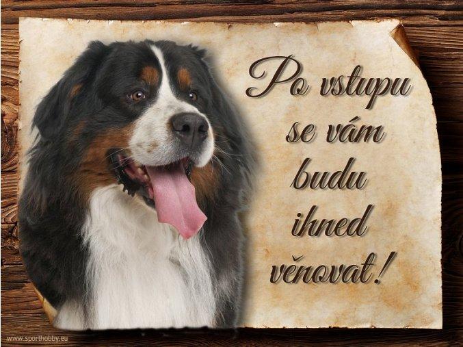 Cedulka Bernský salašnický pes - Po vstupu .../CP059