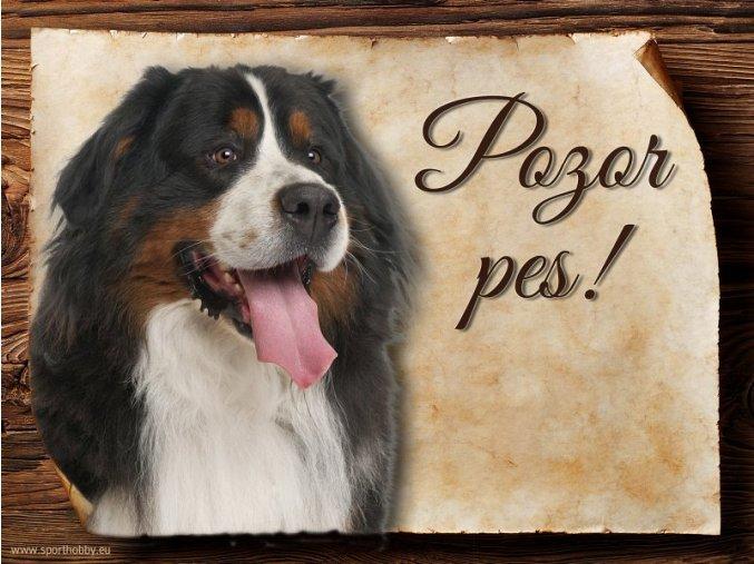 Cedulka Bernský salašnický pes - Pozor pes/CP057