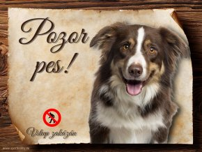 Cedulka Border kolie III - Pozor pes zákaz/CP183