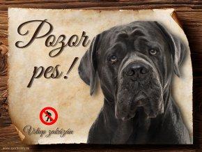 Cedulka Cane Corso - Pozor pes zákaz/CP020