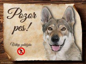 Cedulka Československý vlčák - Pozor pes zákaz/CP615