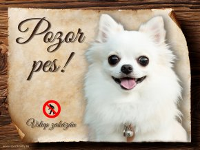 Cedulka Čivava II - Pozor pes zákaz/CP441