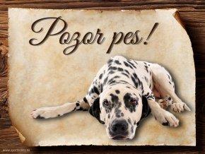 Cedulka Dalmatin - Pozor pes/CP022