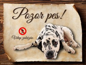 Cedulka Dalmatin - Pozor pes zákaz/CP025