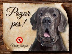 Cedulka Dánská doga - Pozor pes zákaz/CP261