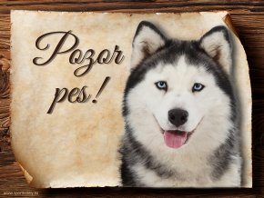 Cedulka Husky - Pozor pes/CP392