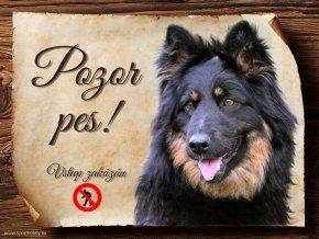 Cedulka Chodský pes - Pozor pes zákaz/CP537